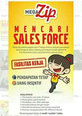 Sales froce megazip
