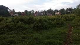 Dijual cepat tanah di Ciseeng Parung
