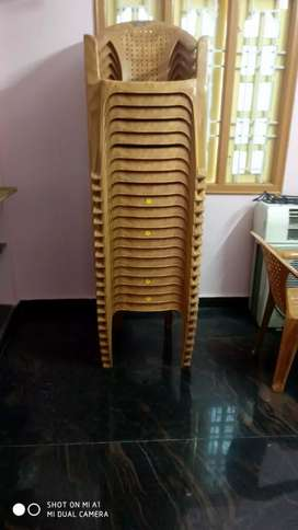 Chair (Plastic)
