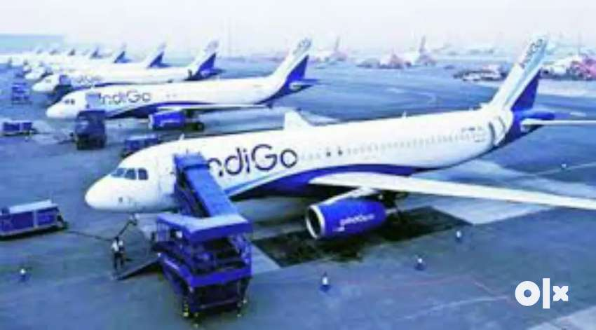 IndiGo Airlines For Ground Staff Limited Site 0