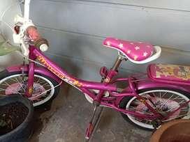 Sepeda anak cewe UNITED