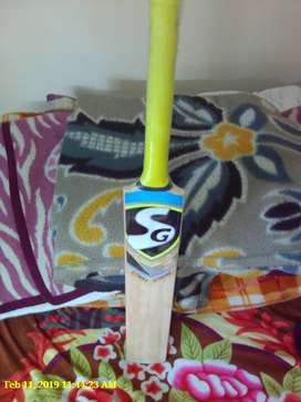 Branded English willow SG cricket bat
