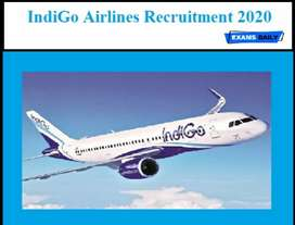 Aviation Industry hiring new candidate