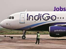 IndiGo Airlines Pvt. ltd. Available Aviation Jobs(Blue & White collar)