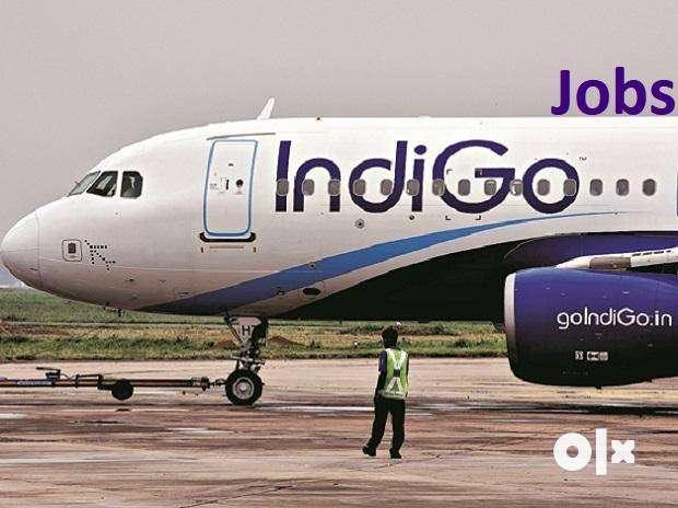 IndiGo Airlines Pvt. ltd. Available Aviation Jobs(Blue & White collar)