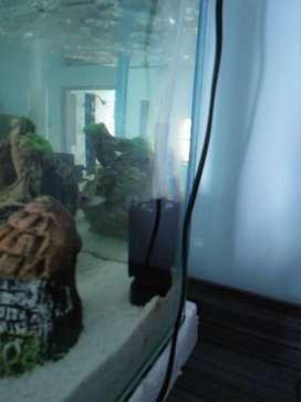 Biosponge filter for fish aquarium
