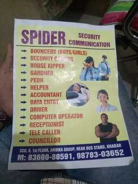 Spider security communication