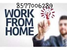 Back office, executive are required