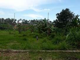 Tanah murah u. cluster/kebun hidroponik/kolam/gudang,by pass