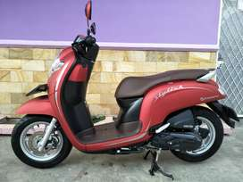 All New Honda Scoopy Stylish 2019 Red Dove Favorite