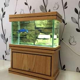 Aquarium mini cupang lampu dan lemari