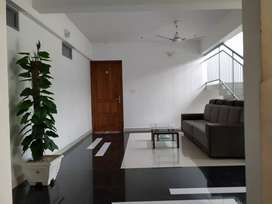 Fully furnished 3BHK Apartments For Sale At kadavanthra