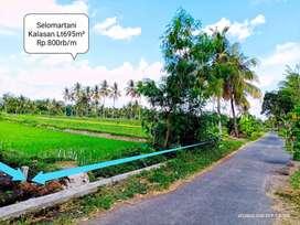 Jual Tanah Tepi Jalan dkt Perkampungan Air Bagus Cocok Buat Rumah