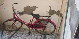 Bicycle ladies pink color