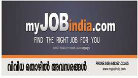 Accountant -Female (Fresher and Exerienced)