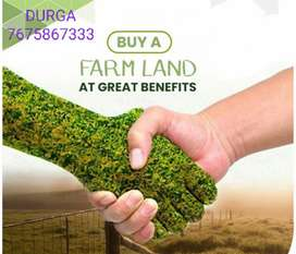 Small Investment on Plots Near Narayankhed