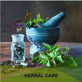 We are selling a ayurvedic product of sugar diabetes medicine.