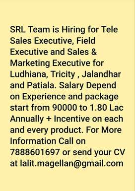 Sales and Marketing Executive Require