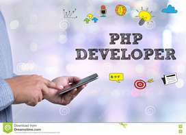 Require PHP Developer