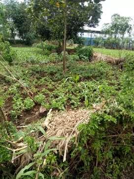 Tanah 4 tumbak daerah banyuresmi