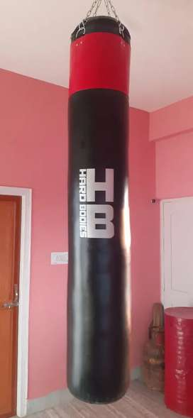 Hard bodies filled punching bag with everlast gloves