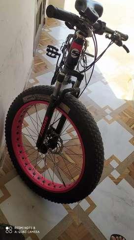 Fat bike cycle