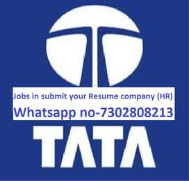Hiring In Full Time Job In Tata Motors Anyone Can Apply  73028,08213