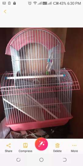 Nice  cage for