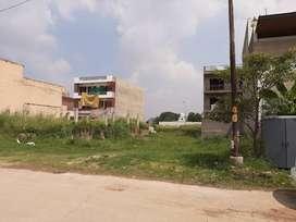 500 Yard Registry Case Plot Sector 117 TDI City Mohali