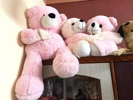 Teddy Bears in Good condition