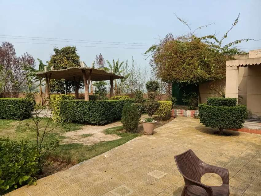 Beautiful farm house available for daily basis on reasonable charges 0