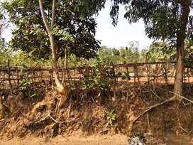 Jual Tanah Samping PT Pupuk Kujang