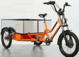 EVOR EBIKE Electric Paddle Assist Tricycles for E commerce delivery