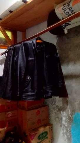 Jaket kulit model 10