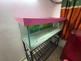 Large Aquarium Tank with Iron Stand