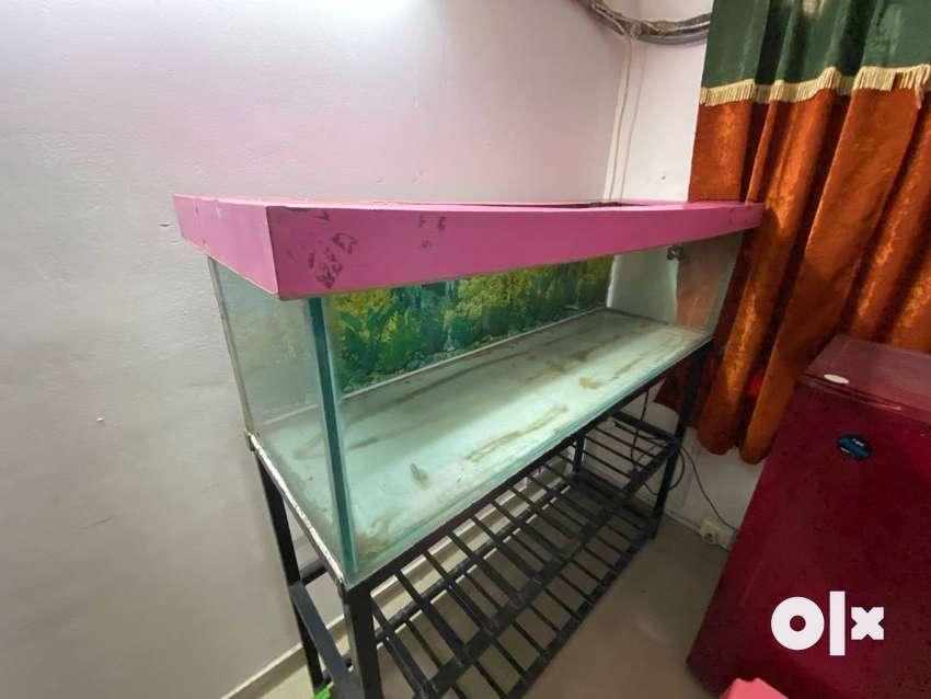 Large Aquarium Tank with Iron Stand 0