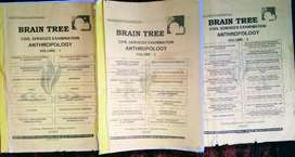 Brain tree material anthropology