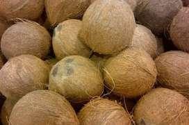 Jual kelapa kupas Tabanan grade A ato B