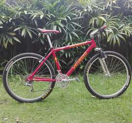 Dijual Specialized M2 Team th 1992 Grupset XTR 8 speed