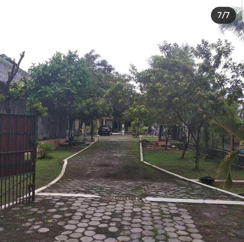 Rumah disewakan luas tanahnya