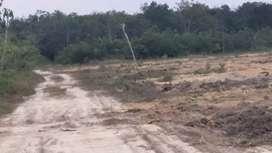 Tanah kaplingan murah dkt jalan besar