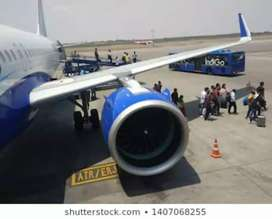 Aviation industry hiring for ground staff