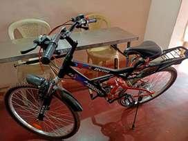 Avon new cycle