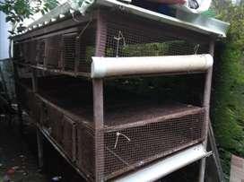 Kozhikudu(Hen cage)
