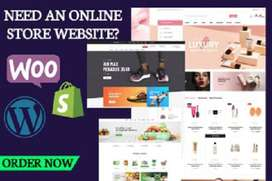 create an ecommerce or marketplace or business  wordpress site