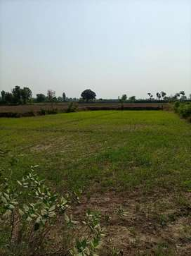 6 KANAL and 16 Marla beautiful agriculture land for sale near dha