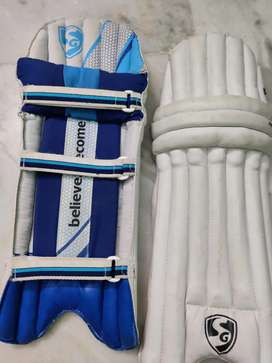 Sg full cricket kit with wicket keeping gloves