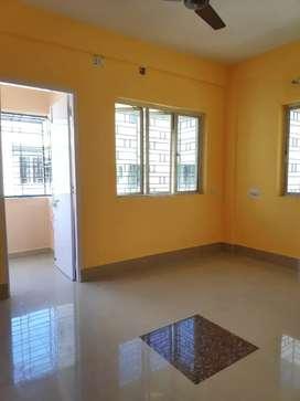 RENTING properties in affordable price(dips)