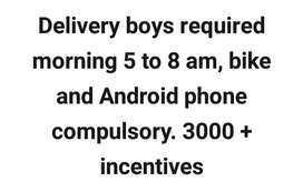 Delivery boys required morning 5-8