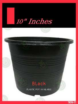 Black Plastic Pot
